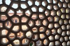 2018-10-26 0613 Indien, Fatehpur Sikri, Jama Masjid-Moschee, Salim-Chishti-Mausoleum, Jalifenster (Joachim_Hofmann) Tags: indien uttarpradesh fatehpursikri moschee jamamasjid salimchishtimausoleum jelifenster
