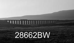 robfrance5d2_28662bw_101018_x158xxx_ribblehead_viaduct_2h95_nt_edr16lr6pse15cefx4weblowres (RF_1) Tags: 158 2018 arriva brel britain britishrailengineering class158 dales db deutschebahn dieselmultipleunit dmu dusk england franchise localtrain localtrains northern northernengland northernrail passengertrain publictransport rail railroad rails railway railwayviaduct railways ribblehead ribbleheadviaduct rural sc settlecarlisle settletocarlisle silhouette silhouettes sprinter stoppingtrain stoppingtrains sunset sunsets train trains transport travel traveling uk unitedkingdom viaduct yorkshire