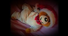 15392994_1174770719267774_7242009347340498090_o (willdrewitsh) Tags: plush peluche teddy bear stuffed toy william drewitsh tom