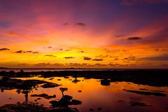 Nightcliff sunset (NettyA) Tags: 2012 australia darwin nt nightcliff northernterritory clouds mangroves rockplatform silhouette sunset water rockpool coastal sky reflection
