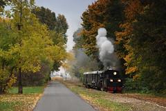 The colours of autumn and the train (DoctorMP) Tags: parowóz parowozy px481756 środa wielkopolska polska jesień autumn herbst eienbahn schmalspurbahn dampflok damfploks steam locomotives train railway narrowgauge poland