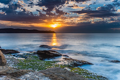 Follow the Golden Path (Merrillie) Tags: daybreak sunrise nature dawn coast water morning sea newsouthwales rocks pearlbeach nsw rocky waterscape ocean earlymorning landscape waves coastal clouds outdoors seascape australia centralcoast sky seaside