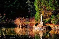 Inspiration (L.Z photo) Tags: sunshine sun beautiful tranquille zen paysage landscape lumineux lumière autumn automne lac nature