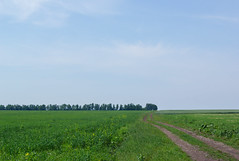 *** (PavelChistyakov) Tags: ua ukraine trip road nature landscape field village countryside sony alpha dslr digital raw rpp lightroom