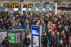 Paddington | Close to the madding crowd (James_Beard) Tags: paddington londonpaddington station railstation trainstation gwr greatwesternrailway britishrail crowd crowds people fujixt2 fujinonxf55200 hordes concourse platform paddingtonstation