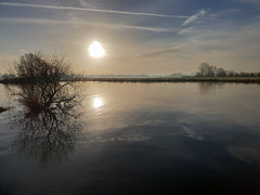 Morning walk (Denise Vuurens) Tags: water reflection nature landscape sun sunrise morning tree river holland netherlands smartphone samsung blue sky cloud lines horizon