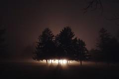 Bob's House In Fog (Tim Loesch) Tags: hunterdoncounty newjersey nj lights trees shadows fog