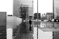 On the boards (pascalcolin1) Tags: paris13 homme man bnf pluie rain reflets reflection chapeau hat planches boards photoderue streetview urbanarte noiretblanc blackandwhite photopascalcolin 50mm canon50mm canon