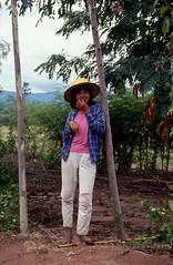 Thai Farmer (scuba_dooba) Tags: film thailand thailandfilm reel6 plustek opticfilm 7600i 7200dpi wolf faust vuescan kodak ektachrome 200 nikon fe farmer tree 1987