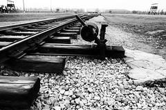 Auschwitz 2—Birkenau (halifaxlight) Tags: poland auschwitx2—birkenau concentrationcamp deathcamp ww2 nazis switch points guardtowers arrivalpoint bw railline railwaytracks absoluteblackandwhite