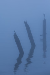 three (eb78) Tags: ca california eastbay bluehour albany flemingpoint pier ruin abandoned decay