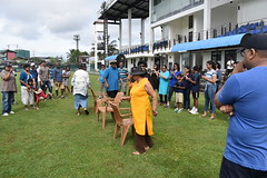 Musical chairs (All_the_HGs) Tags: 2018 hgfa cricket match 3generations october2018 janakaranawakagrounds malliswon