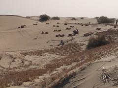 Protección de la carretera. Desierto de Taklamakán. China (escandio) Tags: carretera taklamakan china2018 china 2018 2 xinqian