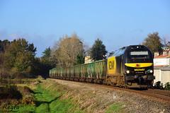Caminha (REGFA251013) Tags: tren comboio train portugal caminha madera galicia linha do minho