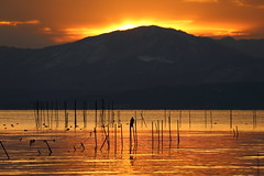 Sunset (Teruhide Tomori) Tags: lakebiwa shiga kohoku landscape winter lake japan japon water afternoon evening nature 琵琶湖 湖北 日本 関西 滋賀県 自然 風景 夕景 sun sunset sky