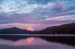 Fuji-san (Lynleigh Cooper) Tags: japan mtfuji travel traveler mountains mountain sunrise lake water sky beauty beautiful beautyinnature nature naturalbeauty natureshot naturephotography landscape landscapephotography landscapes purple blue red asia outdoors ashi hakone reflection new nikon nikond750 primelens fullframe sigma35mm14 sigma35mm
