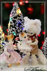 2018Mistoufle00 (Nathy1317) Tags: cocoriang ruppe mocka bjd doll ドール 人形 fairyland pukisha pukifee