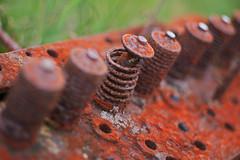 Rust and Lichen (Kiwi Jono) Tags: lichen rust valves engine old logging train pentax outdoor dfa28105f3556