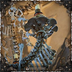At the end of each arm of the chandelier are candle cups made from a ring of pelvic bones, topped with a skull and candle, and adorned at the tip with a prism made from the end of a femur bone. (To be continued...) . 💀 Sign up on our mailing list fo (Sedlec Ossuary Project) Tags: sedlecossuaryproject sedlec ossuary project sedlecossuary kostnice kutnahora kutna hora prague czechrepublic czech republic czechia churchofbones church bones skeleton skulls humanbones human mementomori memento mori creepy travel macabre death dark historical architecture historicpreservation historic preservation landmark explore unusual mechanicalwhispers mechanical whispers instagram ifttt