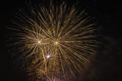 _DSC6335 (erengun3) Tags: fiftofnovember 5thofnovember firework fireworks havayifişek southwark southwarkcouncil council southwarkpark southwarkfireworks 2018 southwarkfireworks2018 se16 guyfawkes fireworksnight explosives