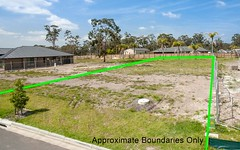 Lot 207, 50 Royal Ave, Medowie NSW