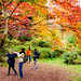 At Todoroki Valley Park of autumn leaves, Setagaya, Tokyo : 等々力渓谷公園