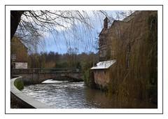 petit pont (Christ.Forest) Tags: normandi normandy 14 broglie eau riviére arbre pont nature village lovenormandie
