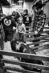 girl with pig (Jen MacNeill) Tags: pa pennsylvania pennsylvaniafarmshow farm show agriculture bnw bw blackandwhite farming animals pigs porcine swine kids children 4h