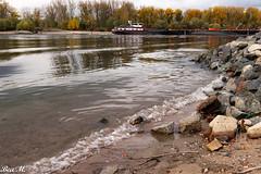 Niedrigwasser (trixi.midik) Tags: photo schiff 24mm rheinhessen landscape impressionen outdoor canon licht rheinschiffe goout