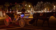 2019.01.13.5698 Nighttime Coach (Brunswick Forge) Tags: 2019 florida night staugustine nikond500 lights winter favorited grouped