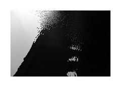 (billbostonmass) Tags: trix 400 film ddx 14ddx800min68f leica m6 50mm summicron epson v800 boston massachusetts charles river rangefinder
