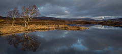 The BoatHouse.jpg (Attapp) Tags: green boathouse rannochmoor wintersun scotland