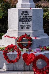 20181111_0072_1 (Bruce McPherson) Tags: brucemcphersonphotography centumcorpora remembranceday armistice brassband 100piecebrassband livemusic bandmusic brassmusic remembrance armisticeday veteransday mountainviewcemetery jones45 areajones45 commonwealthcemetery remembering honouring wargraves outdoorperformance outdoormusic vancouver bc canada thelittlechamberseriesthatcould homegoingbrassband