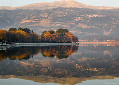 Fall colours in Pamvotis lake (Giorgos.siat) Tags: ioannina giannina giannena ιωαννινα ηπειροσ epirus φθινοπωρο lake lakeside landscape lights colour colors color orange sky sunset skyscape lakefront pamvotis pamvotida reflections reflection nikon d3200 waterscape water waterfront exposure 35mm trees tree yellow outdoor outdoors dusk dawn greece greek hellas ελλαδα γιαννενα δεντρα λιμνη νερα out view nature