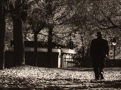 solitude (photosgabrielle) Tags: photosgabrielle park urban monochrome montreal urbain fall people noirblanc bw bwphotography hank you
