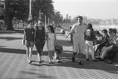 Manly beach, summer 2018  #768 (lynnb's snaps) Tags: 201803 35mm apx100 manly rodinal bw beach blackandwhite film people rangefinder 2018 sydney australia summer bianconegro biancoenero blackwhite bianconero blancoynegro noiretblanc schwarzweis monochrome ishootfilm agfaapx100 family walking dog canonp
