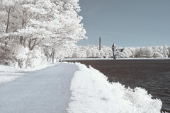 30D IR_20180612_002 (falconn67) Tags: infrared ir reservoir chestnuthill chestnuthillreservoir spring boston newton canon 30d 1740l