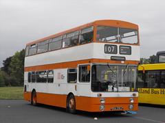 2236, RNA 236J, Daimler Fleetline CRG 6LXB, Park Royal Body (H47-29D), 1971 (t.2018) (Andy Reeve-Smith) Tags: 2236 mancunian selnec greatermanchestertransport rna236j daimler fleetline parkroyalbody parkroyal gardner 6lxb showbus 2018 showbus2018 derbyshire derbys leicestershire leics neleics doningtonpark donington castledonington