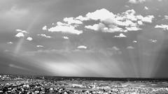 La météo fait son spectacle  -  The weather report makes its show (Philippe Haumesser (+ 7000 000 view)) Tags: paysage paysages landscape landscapes nuages clouds ciel sky temps weather panorama noiretblanc blackandwhite monochrome ville city village wintzenheim alsace elsass france hautrhin 68 panasonicdmcfz7 169