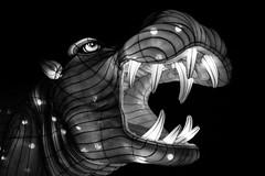 Eating the Stars (belleshaw) Tags: blackandwhite laarboretum moonlightforest lanternartfestival hippopotumus teeth mouth lantern fabric light glow night jaws eye detail texture