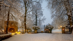 Der Rombergpark (Frank Heldt Photography) Tags: dortmund rombergpark torhaus winter schnee langzeitbelichtung foto fotografie frankheldt nordrheinwestfalen deutschland de 5dmarkiv hdr