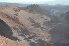 2017-11-08_1807_DSC_0485 (becklectic) Tags: 2017 atacamadesert chile regióndeantofagasta reservanacionallosflamencos sanpedrodeatacama sunsethike valledelaluna