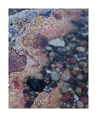 Corrie foreshore, Arran (DavidO'Brien) Tags: corrie arran shoreline coast natural landscape canon 5dii