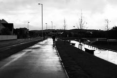 Heol Parc-y-llyn, Aberystwyth (Rhisiart Hincks) Tags: duagwyn cymru ceredigion aberystwyth rain lluvia pluie fearthainn báisteach uisge glav euri glaw blancinegre gwennhadu dubhagusgeal dubhagusbán blackandwhite bw zuribeltz blancetnoir blackwhite monochrome unlliw blancoynegro zwartwit sortoghvid μαύροκαιάσπρο feketeésfehér juodairbalta