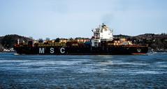 MSC Ela (Nicober!!!) Tags: quebec canada fleuve stlaurent stlawrence river ship porteconteneurs containership msc ela