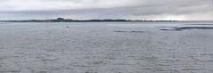 Moody Murky Manukau on a grey moist Xmas Day (Den Rob) Tags: water seawater harbour manukau moody murky grey blue xmas day muddy smallboat orange visibility rainclouds shallows lowtide nikon d750 sigma 135mm f18 artlenses