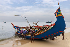 Beached (Kev Gregory (General)) Tags: tour south southern india indian asia kev gregory canon 6d mark ii holiday bangalore mysore kabini ooty madurai munnar alleppey cochin marari beach fish fishing boat work maintain fisherman fishermen kerala
