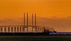 Öresund Bridge (Explore 11/08/2018) (ArmyJacket) Tags: copenhagen denmark city captiol european europe danish kobenhavn travel öresundbridge sweden malmo bridge sunrise boat sky