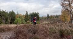 haarlerbergloop 10 km (3)