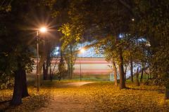 Temné predmestie   Os 4729   BA-Predmestie (lofofor) Tags: dark ba bratislava night light lights streets city mesto sr svk sk slovakia slovensko predmestie jeseň fall autumn leafs leaf nadchod chodník footpath walk walkway train railways rail station stanica